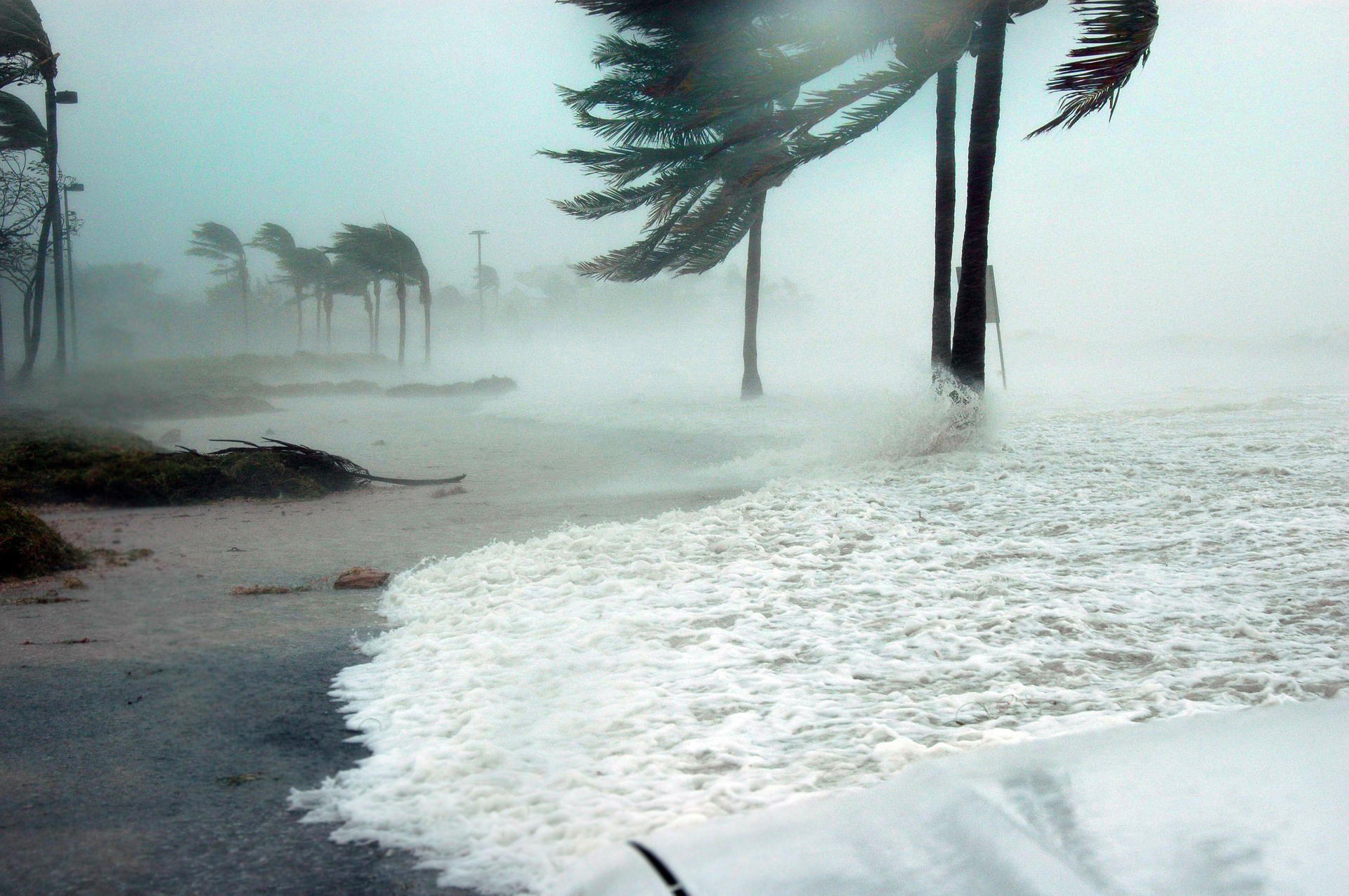 Key West Hurricane Picture