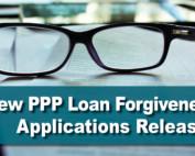 New PPP Loan Forgiveness Application